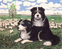 Two Sheepdogs