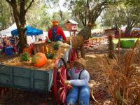 Hunsader Farm Pumpkin Festival 2013