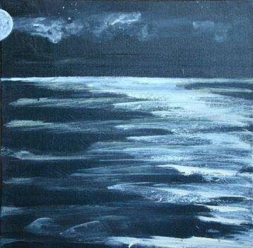 Moonlit sea by Thijs Schaepman