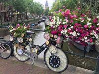 Clockdown in Amsterdam