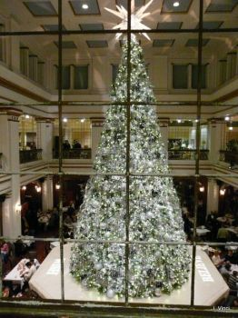 Marshall Fields/Macy's