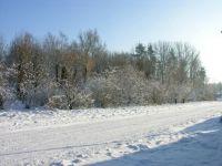 Winter2010 071