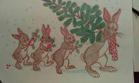 Bunnies at Christmas time