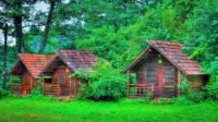 Little Cabins In The Woods...