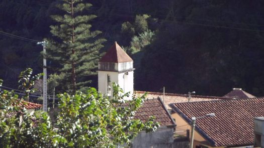 023 Falca-Madeira