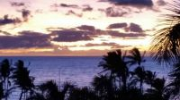 hawaii picture3-susie-george-390