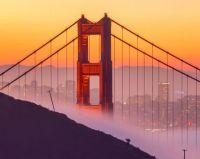 Golden Gate Bridge from Hawk Hill