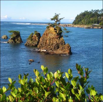 Yesterday - Siletz Bay, Oregon Coast!