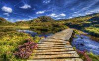 Wooden Bridge-Highlands Scotland