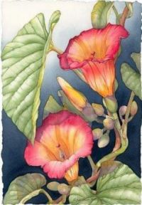 Janine's Hawaiian Bells by Barbara Groenteman