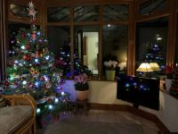 christmas in conservatory