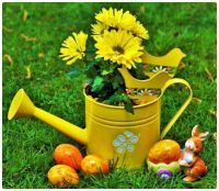 Yellow Tin Watering Can, Flowers, and Dipped Easter Eggs