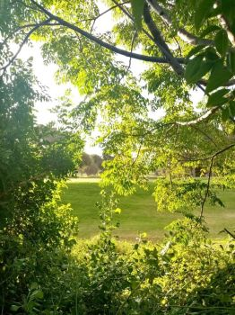 View of Golf Course from Daughter's Garden