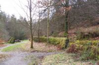 Hardcastle Crags 2