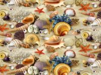 BEACH SEASHELLS