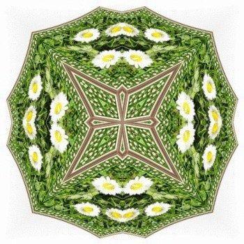 Sedmikrásky - deštníček / Daisies - Small Umbrella