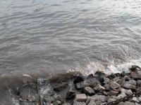 """mořská """"živá voda"""""""
