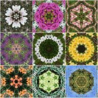 kaleidoscope 50 collage very large