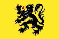 Fun With Belgian Flags - Flanders - Medium