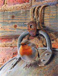 Robin in the barn
