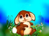PUZZLE - Little Bunny