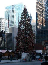 Chicago 2010 December 049