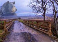 Over The Bear Rainbow Bridge