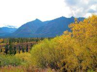 Honeymoon Run, Alaska