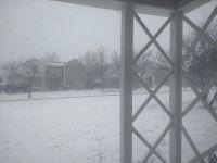 It's a Little Snowy!