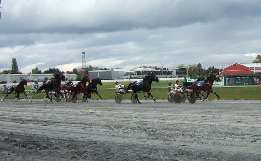Harness Races, Cloverdale, B.C.