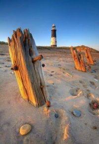 Lighthouse 43