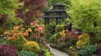 Pagoda in a Garden