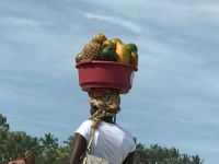 qoman with fruit