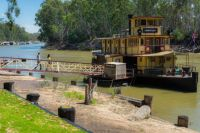 A cruise on the Murray River on the 'Emmylou'