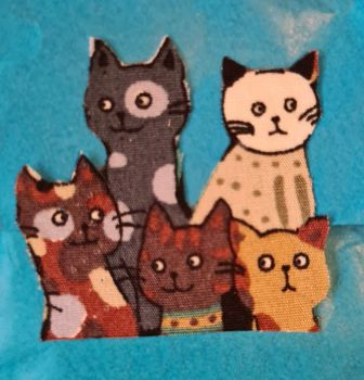 What's the collective name for cats?