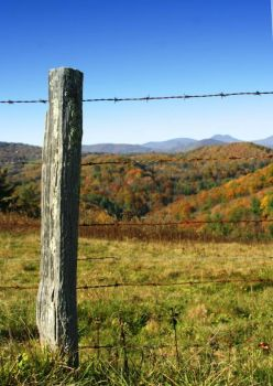 Wooden fencepost