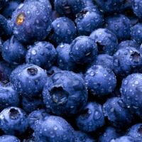 Blueberries...oh my!