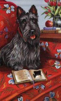 Scottish Terrier Wishes You A Happy Valentine's Day Jigidi Friend!