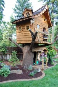 Now that's a tree house!
