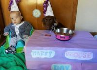 Moose's Birthday party