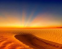 1  ~  'Golden sandstorm approaching.'