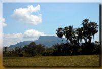 Countryside scene...