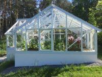 Willys växthus