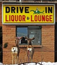 """""""Hey deer, care for a beer?"""""""