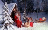 Christmas scence