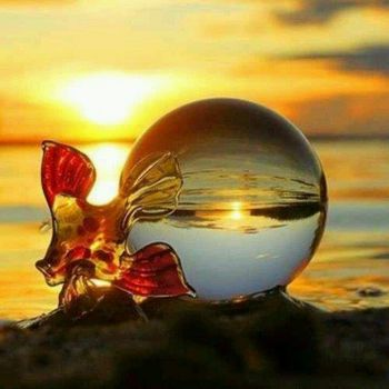 4  ~  'Little fish gliding from glass ball on a sunset shore.'