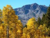 Fall Mt. Tallac