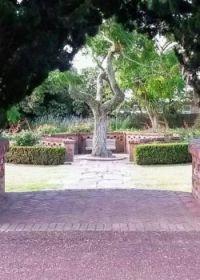 Local Reception garden