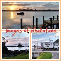 Whakatane, NZ ..Evening Stroll