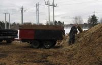moving the manure pile